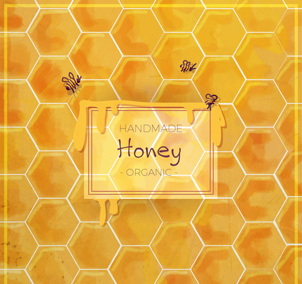 Honey honeycomb background vector