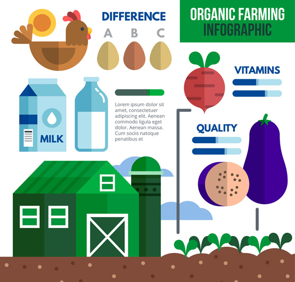 Organic agriculture information Vector AI