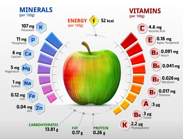 Vitamin information Vector EPS