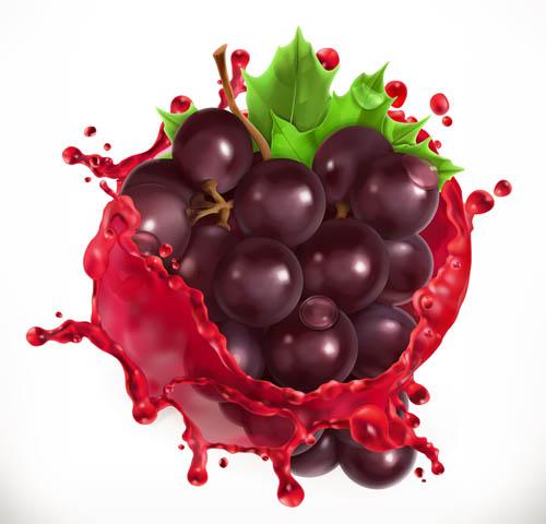 Grape Vector EPS