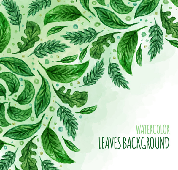 Green watercolor leaf Vector AI