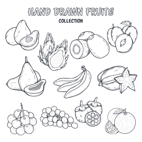 Hand-painted fruit Vector AI