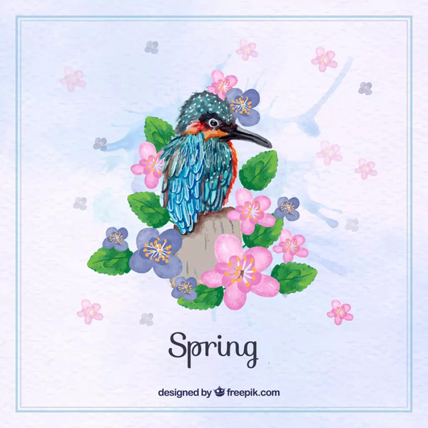 Kingfisher flowers in spring Vector AI