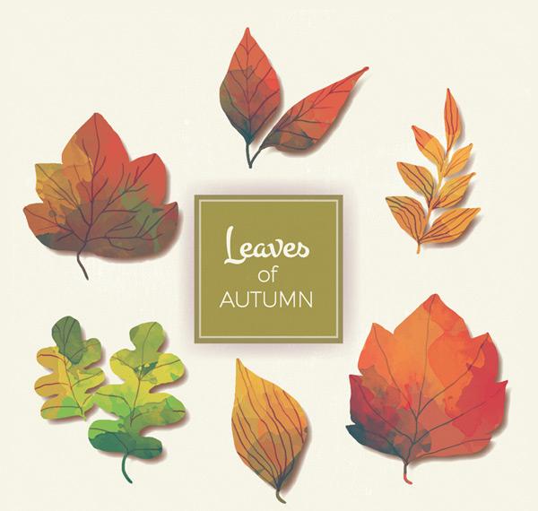 Painting autumn leaves Vector AIs