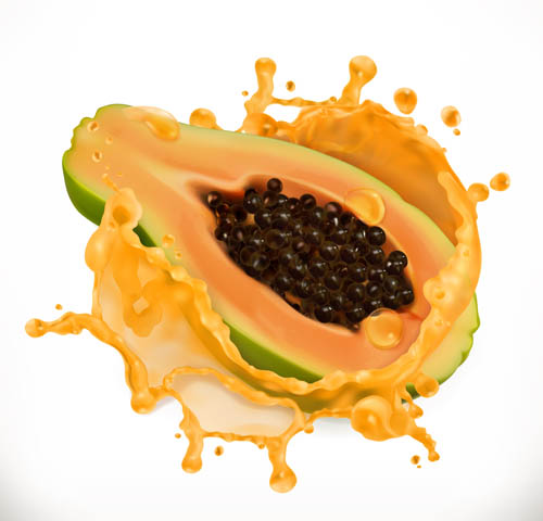 Papaya Vector EPS