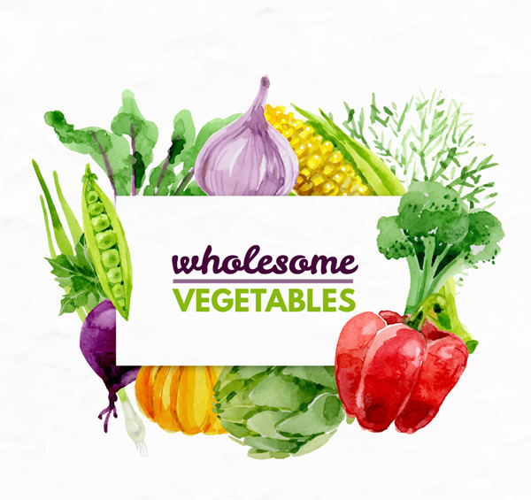 Water paint healthy vegetables Vector AI