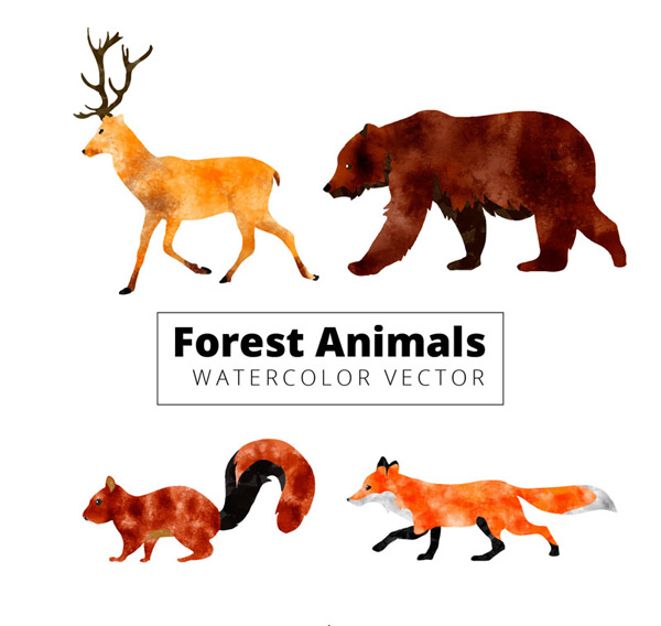 Water painted jungle animals Vector AI