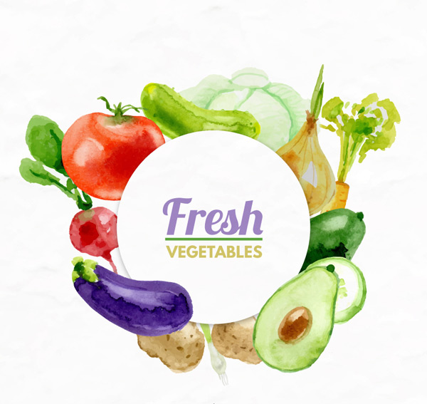 Watercolor of fresh vegetables Vector AI